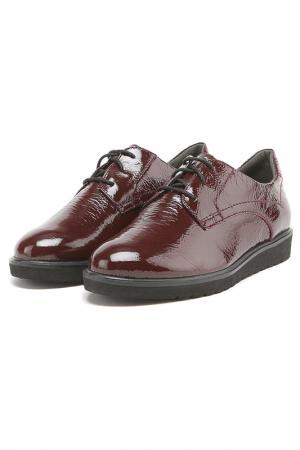 Ботинки на шнурках JANA [LEATHER]. Цвет: фиолетовый