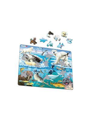 Пазл Арктика LARSEN AS. Цвет: белый, синий, зеленый, голубой, оранжевый, желтый
