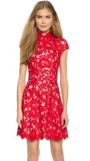 Кружевное мини-платье Warrior Lover. Цвет: розовый