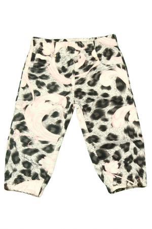 Спортивные брюки STEFANIA. Цвет: леопардовый