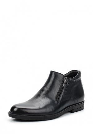 Ботинки классические ElRosso El'Rosso. Цвет: синий
