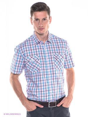 Рубашка Maestro. Цвет: розовый, синий
