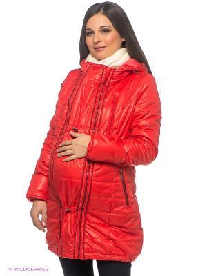Куртка Ехидна. Цвет: коралловый