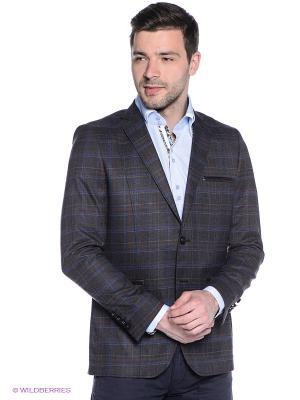 Пиджак Alex DANDY. Цвет: серо-коричневый
