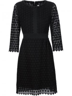 Платье Nolly Diane Von Furstenberg. Цвет: чёрный