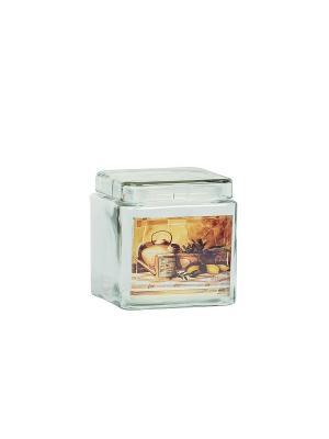 Набор из 3-х банок Старый натюрморт (2200мл,1700мл,1250мл) в п/у Elff Ceramics. Цвет: прозрачный, бежевый
