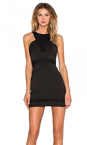 Обтягивающее платье remember me NBD. Цвет: черный