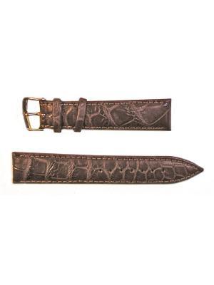 Ремень для часов, Orlando Kroko, нат.крокодил, коричневый, 20 мм Di-modell. Цвет: коричневый