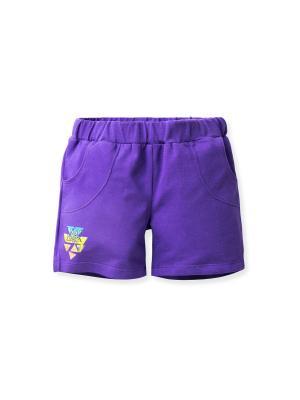 Шорты FLOBABY. Цвет: фиолетовый