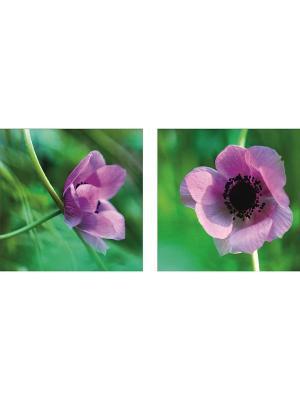 Картина модульная из квадратов 300*300мм ДСТ. Цвет: фиолетовый, зеленый