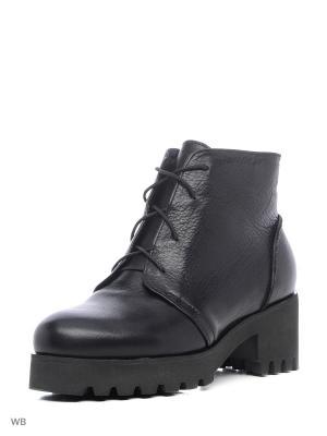 Ботинки ESTELLA. Цвет: черный, антрацитовый