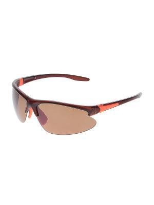 Очки солнцезащитные Infiniti. Цвет: коричневый, оранжевый
