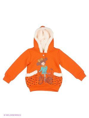 Свитшот Kidly. Цвет: оранжевый
