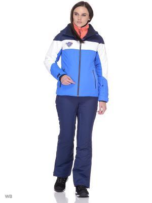 Куртка Stayer. Цвет: темно-синий, белый, синий