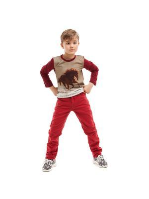 Пуловер TINYFOX. Цвет: темно-красный