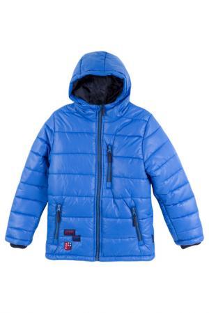 Куртка Coccodrillo. Цвет: голубой