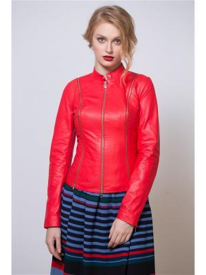 Кожаная куртка SUSSEX. Цвет: красный