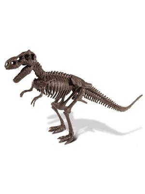 Набор для проведения раскопок - Тираннозавр серия Dr.Steve Hunters Geoworld. Цвет: голубой, коричневый, салатовый