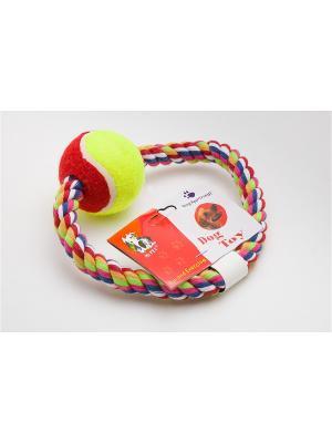 Игрушка канатная кольцо с мячом, 15 см Doggy Style. Цвет: салатовый, красный