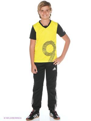 Брюки YB LR T SWT PT Adidas. Цвет: черный, желтый