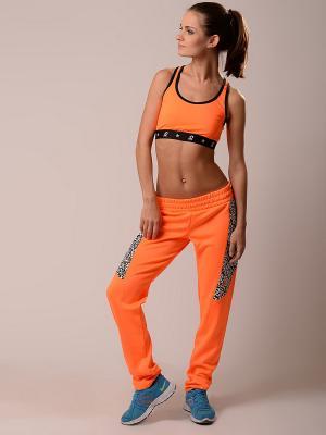 Брюки EMDI. Цвет: оранжевый
