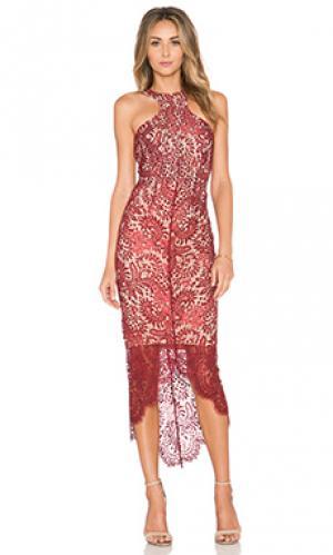 Платье sage Elle Zeitoune. Цвет: красное вино