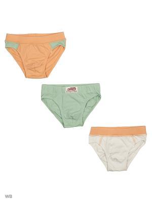Трусы Ritta Romani. Цвет: зеленый, белый, светло-оранжевый