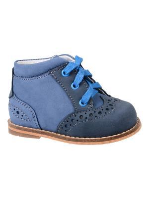 Ботинки Тотто. Цвет: синий