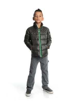 Куртка Appaman. Цвет: серый, синий