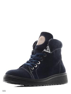 Ботинки Marko. Цвет: темно-синий