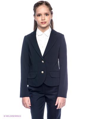 Пиджак SILVER SPOON. Цвет: темно-синий