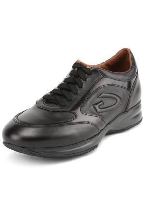 Кроссовки Alberto Guardiani. Цвет: черный
