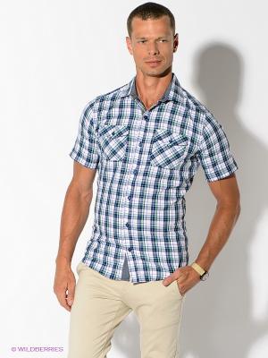Рубашка Maestro. Цвет: темно-синий, светло-зеленый
