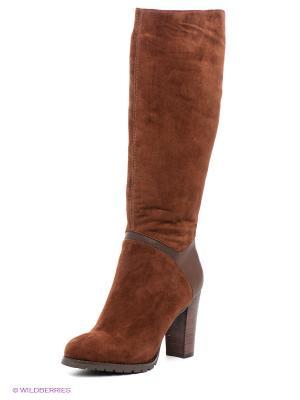 Сапоги Calipso. Цвет: коричневый