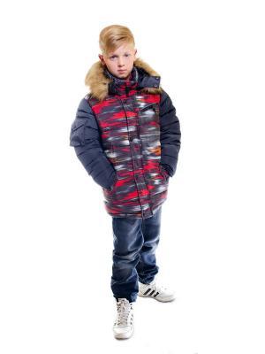 Куртка для мальчика Астероид Пралеска. Цвет: черный