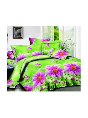 Комплект постельного белья СОФТ-САТИН, дуэт, диз (М-2)-09 Dorothy's Нome. Цвет: салатовый, фиолетовый, белый