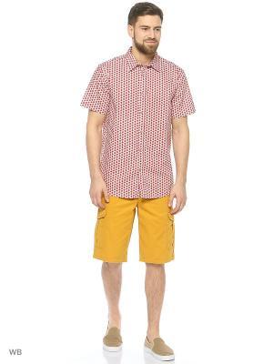 Рубашка Modis. Цвет: белый, бордовый