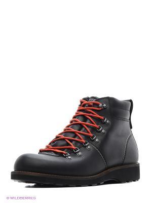Ботинки ECCO. Цвет: черный, синий