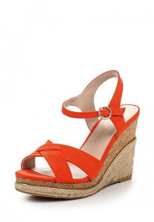 Босоножки Dorothy Perkins. Цвет: оранжевый