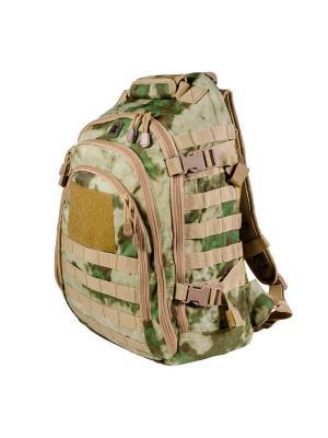 Рюкзак TF30 Mission Pack TACTICAL FROG. Цвет: светло-зеленый
