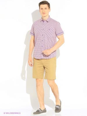 Рубашка Hazard. Цвет: бордовый