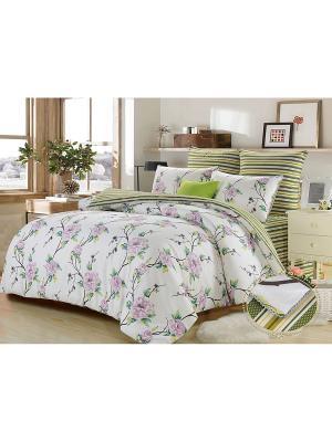 Комплект постельного белья, Саманта , Семейный KAZANOV.A.. Цвет: молочный, зеленый
