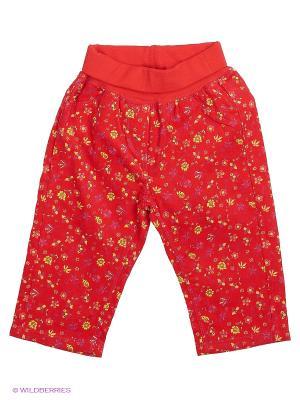 Брюки Yallo Kids. Цвет: красный