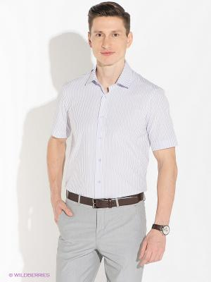 Рубашка ABSOLUTEX. Цвет: сиреневый