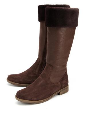 Сапоги Тувия. Цвет: коричневый