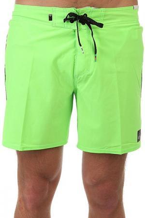 Шорты пляжные  Everydaykaima16 Green Gecko Quiksilver. Цвет: зеленый