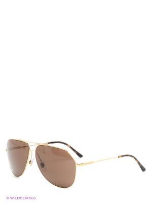 Очки солнцезащитные DOLCE & GABBANA. Цвет: золотистый, коричневый