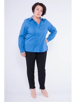 Блузка Pavlotti. Цвет: синий