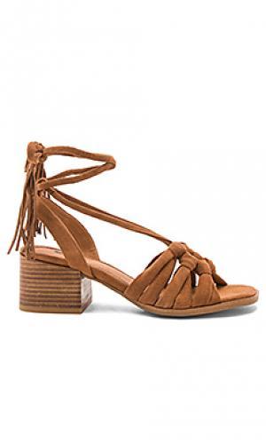 Туфли на каблуке simone Matiko. Цвет: коричневый