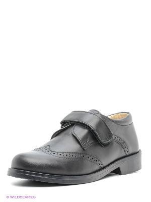 Ботинки Зебра. Цвет: черный